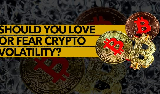 Should You Love or Fear Crypto Volatility?