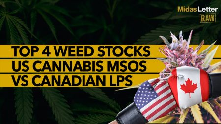 US Cannabis MSO Vs Canadian LP | Top 4 Weed Stocks