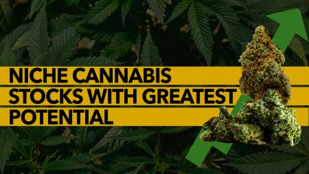 Niche Cannabis Stocks with Greatest Potential.
