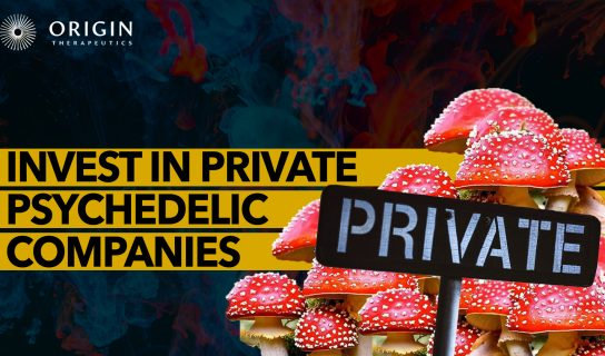 How to Invest in Early Stage Private Psychedelic Companies | Origin Therapeutics (ORIG)